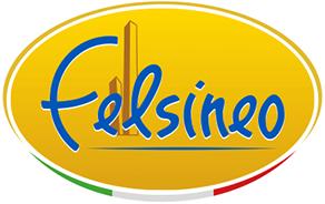 Logo Felsineo